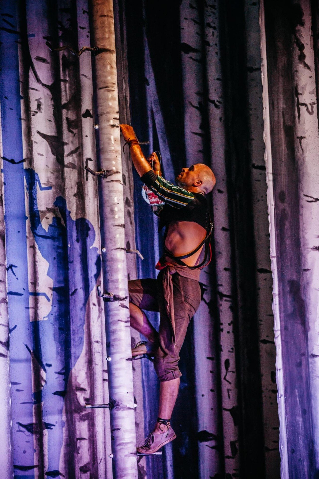 Simon Lima Holdsworth A Midsummer Night's Dream (set)